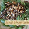 Spinach with Warm Lentils Salad