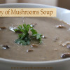 Medley of Mushrooms Soup