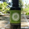 Scrumptious Aloe Herb Cleanser by Annmarie Gianni