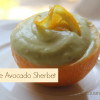 Orange Avocado Sherbet