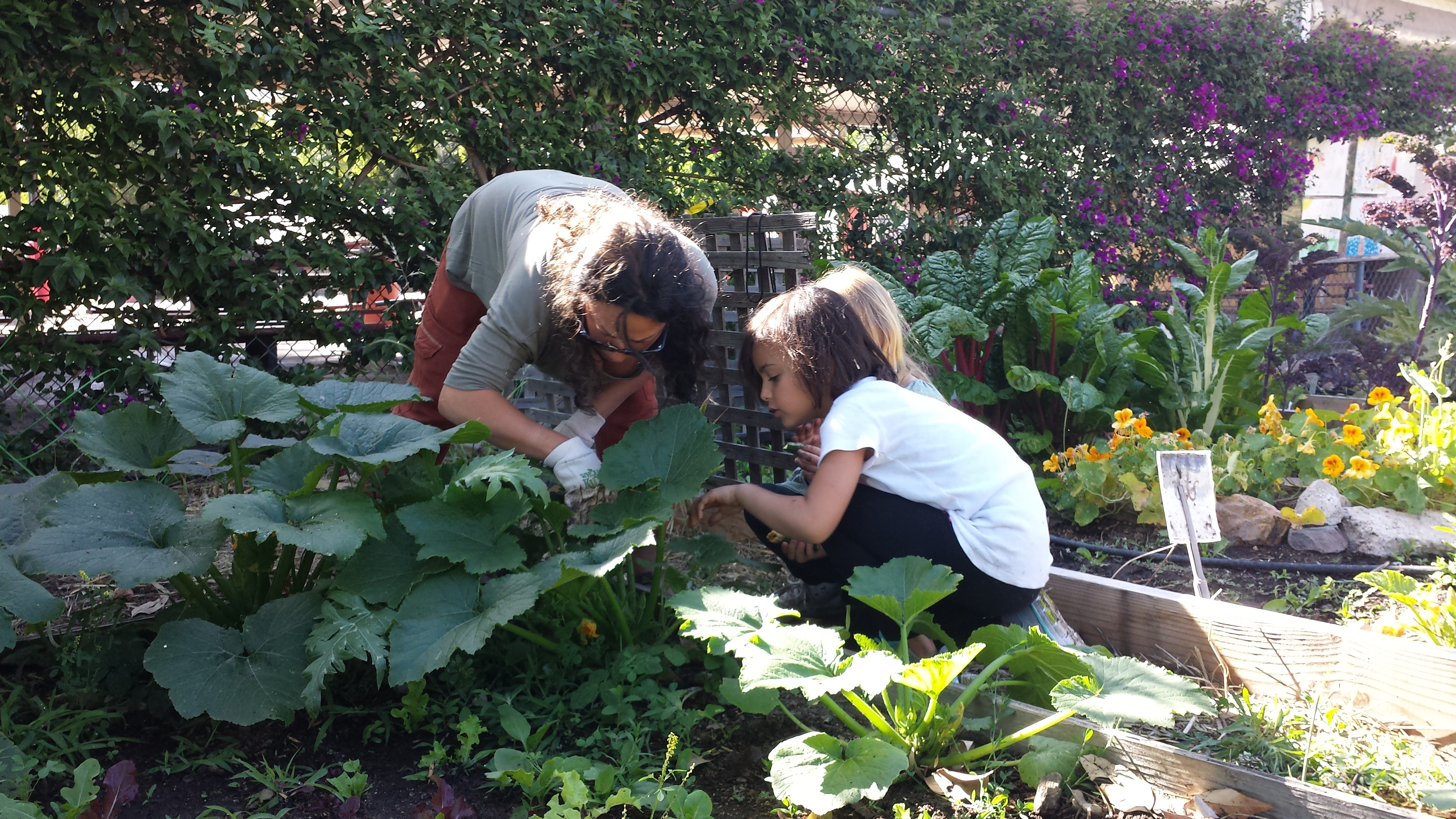 young girl with teacher in organic vegetable garden