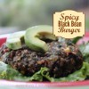 Spicy black bean burger square photo