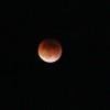 The Unique Beauty of a Blood Moon Lunar Eclipse