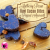 Mulberry Pecan Raw Cacao Bites with Popped Amaranth