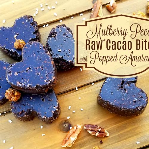 Mulberyy Pecan Raw Cacao Bites title image