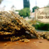 Garlic Butter Seed Crakers